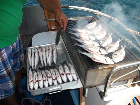 Merhaba Foça, Foça Kiralık Tekne, Foça Tekne Turları, Balık Avı Foça, Balık Avı